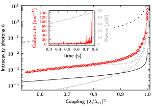 Real-time observation of fluctuations at the driven-dissipative Dicke phase transition
