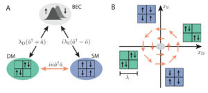 Dissipation Induced Structural Instability and Chiral Dynamics in a Quantum Gas